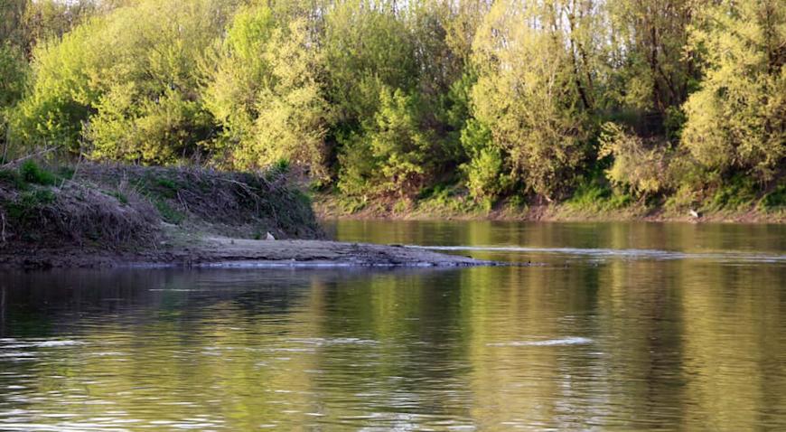 Povodom Dana planeta Zemlje velika akcija čišćenja obale rijeke Save