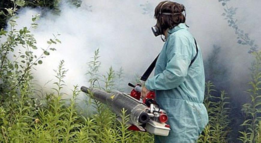 Sutra i prekosutra larvicidno suzbijanje ličinki komaraca na području Rugvice