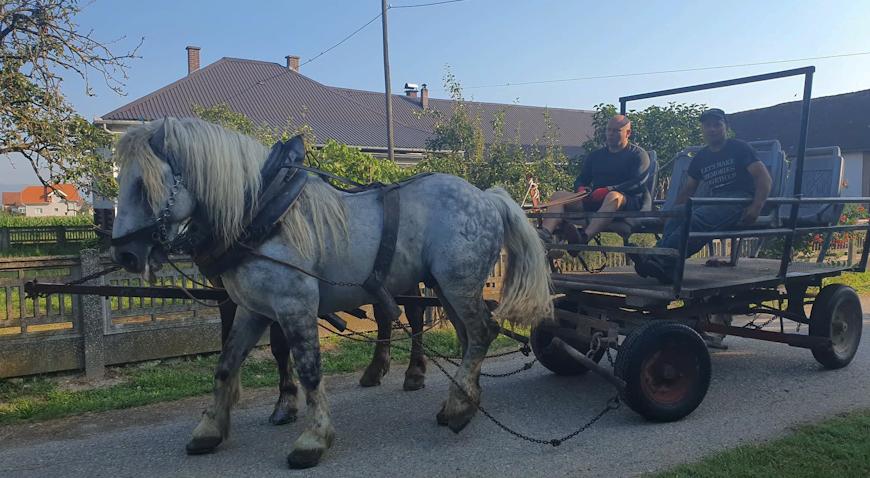 Vedran Pereković veliki zaljubljenik u konje
