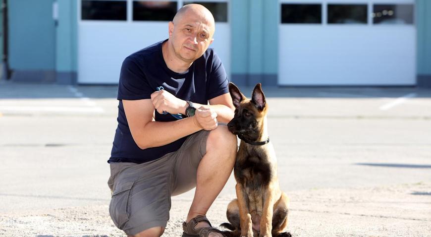 VIDEO: Prinova u redovima DVD-a Karlovac – kujica Foxy postat će novi potražni pas
