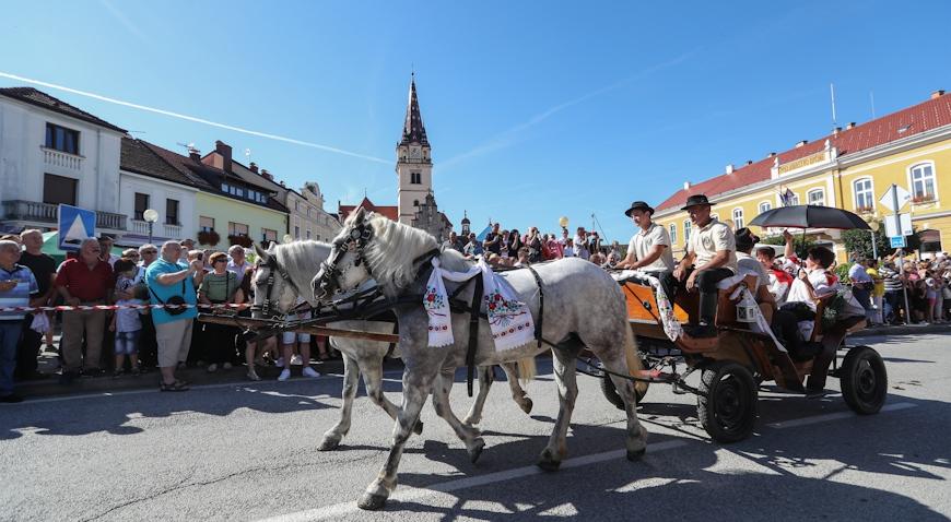 FOTO: Održano 17. hodočašće konjskim zapregama u svetište Majke Božje Bistričke