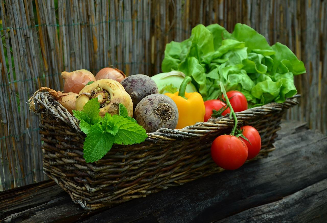 Samo svježe i domaće – Sajam darova zemlje u Jastrebarskom