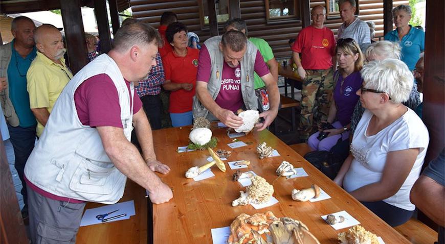 Gljivarijada na Budinjaku okupila oko 150 sudionika sa svih krajeva Hrvatske