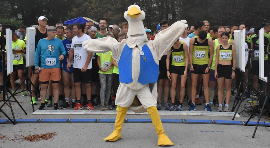 VIDEO/FOTO: MARTINSKI POLUMARATON USPIO – Više od 350 natjecatelja vratilo trčanje u Dugo Selo