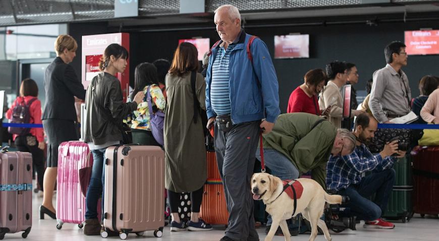 VIDEO: Labradori obradovali putnike Zračne luke