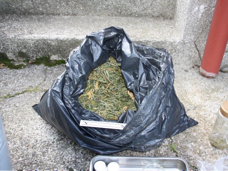 U kući 48-godišnjaka s Črnomerca pronađeno 3 kilograma marihuane