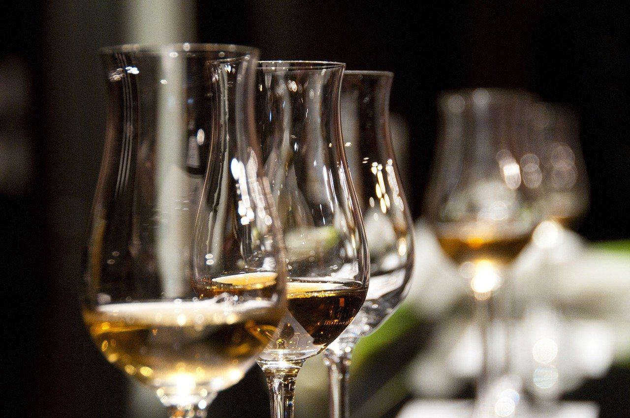 Vinariji Kurtalj uručena nagrada Bijeli grozd za izniman doprinos u razvoju vinske kulture