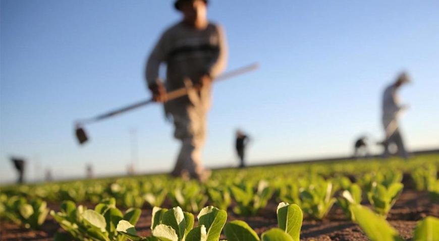 ZA POLJOPRIVREDNIKE – Postanite korisnici digitalne poljoprivredne platforme