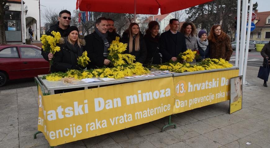 FOTO: 8. Velikogorički dan mimoza