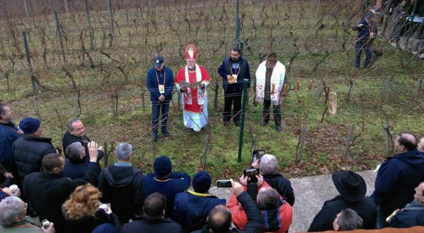 Vincekovo će se slaviti diljem Zagrebačke županije